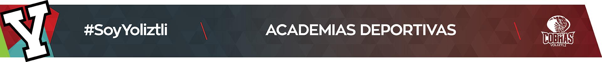 TOP-academias1920